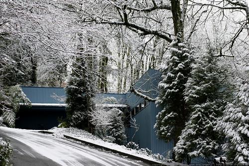 winter wonderland / home    MG 9439