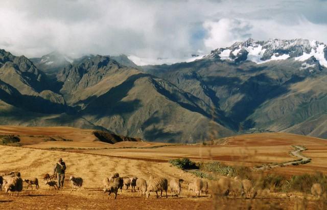 Paisagem Andina