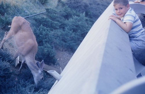 With a deer, Seattle, 1962