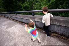 brothers crossing the bridge at the lake oswego dam …