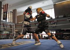 contact sport, sports, sanshou, strike, punch, amateur boxing, boxing,