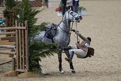 Royal Windsor Horse show 2011