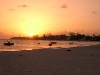 Barbados0055_CIMG0413