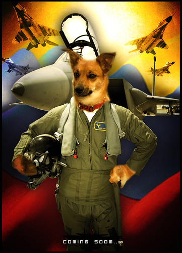 Perro Piloto - The Movie