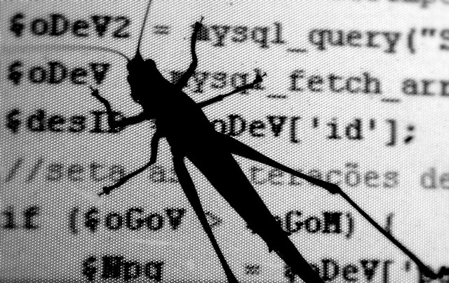 A bug landed on a monitor showing code