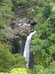nature reserve, stream, waterfall, rainforest, body of water, watercourse, ravine, state park, jungle,