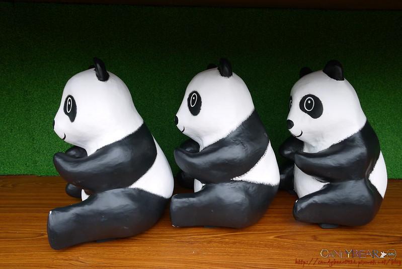 我们的国宝 - 台湾黑熊 也一样是濒临绝种的稀有动物喔!