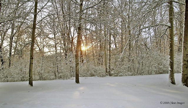 Sunlit Snow