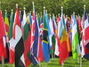 A Large Group of National Flags