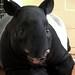 Tapir by suswann