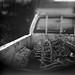 Kodak Tri-X 400, Pentacon Six TL, CZJ Biometar 80mm @f2.8 (freelensing), Rodinal 1+50 by Craig Eastman