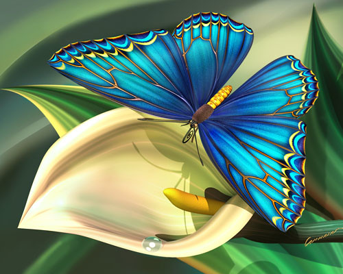 blue butterflies liliesjpg - photo #16