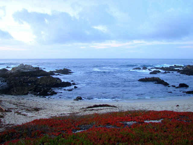 Pacific Grove Vacation Rental Properties