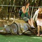 San Diego Zoo 118