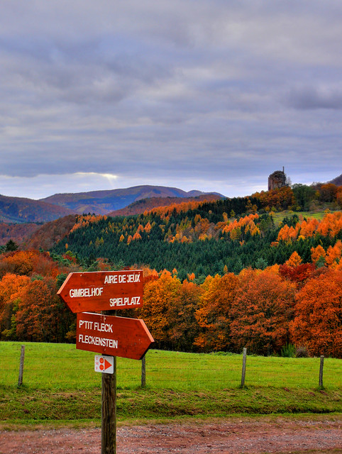 Fall in Alsace, France