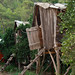 Treehouses in Olympos