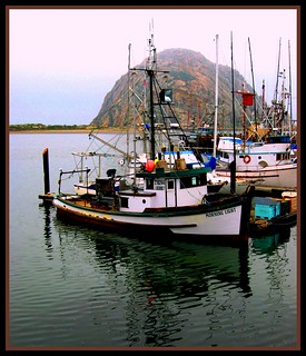 Morning Light in Morro Bay