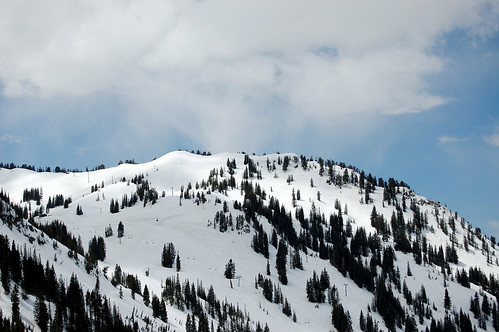 Alta snowboard