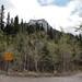 Hike - Heart Mountain Scramble - May