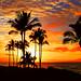 Tropical Sunset by janruss