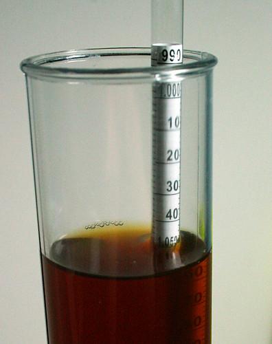 OG 1.049 Amber Ale