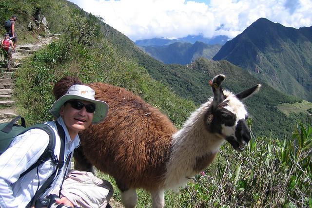 Rama Llama Ding Dong