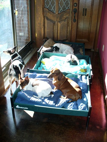 2007-09-28 - AM Foyer Sun - 0003