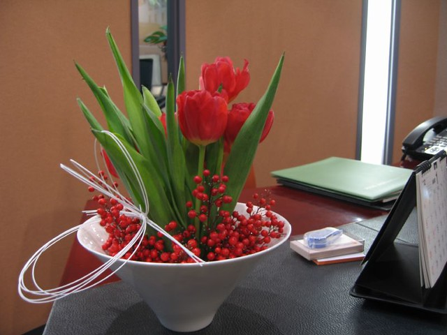 on the reception desk, Canon IXY DIGITAL 600
