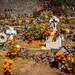 2016 - Mexico - Pátzcuaro - Janitzio Island Cemetery por Ted's photos - For Me & You