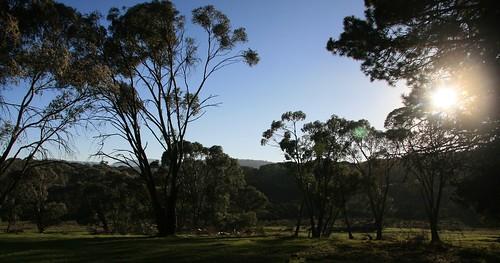 trees mountains sunrise geotagged australia nsw kosciuszkonationalpark greatdividingrange currangohomestead currangostation currangoplain