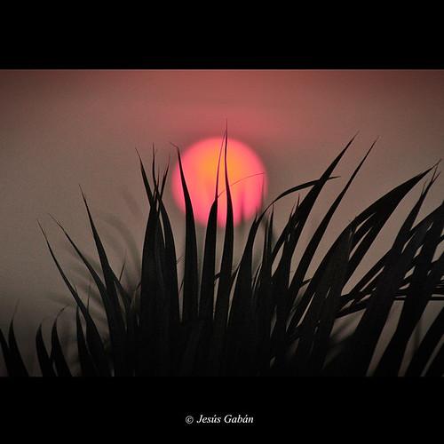 sun sol méxico sunrise alba amanecer veracruz lostuxtlas jesúsgabán mygearandme mygearandmepremium mygearandmebronze mygearandmesilver mygearandmegold mygearandmeplatinum mygearandmediamond