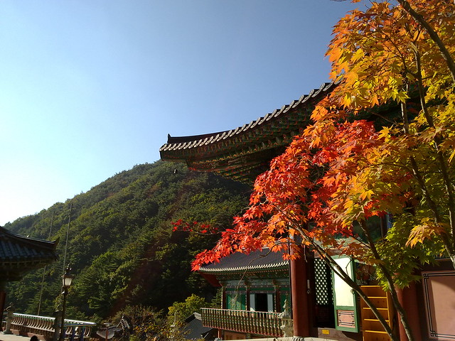 팔공산 관암사의 가을 Autumn in Gwanamsa, Palgongsan, Daegu