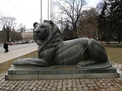 Lion at the War Memorial