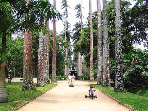 Jardim Botânico fotos e história do Jardim Botânico do Rio