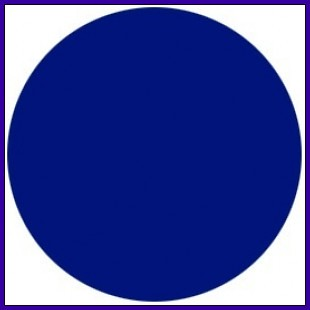 Blue Circle with White Lines Logo