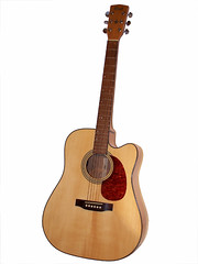 string instrument, ukulele, acoustic guitar, guitar, vihuela, acoustic-electric guitar, bass guitar, string instrument,
