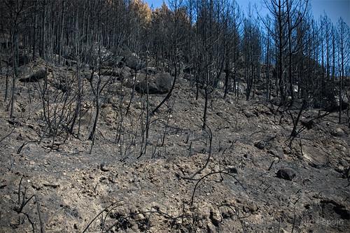 Los restos del incendio