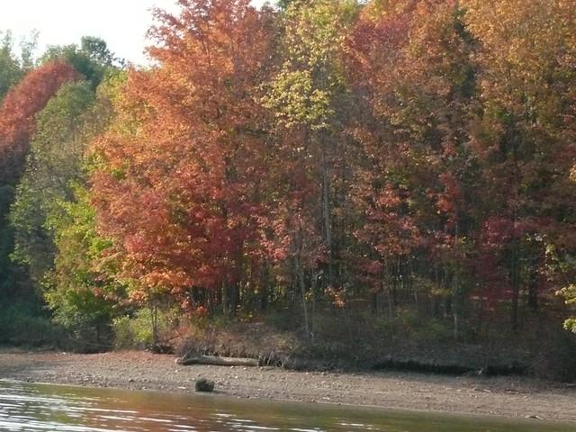 Header of Alum Creek