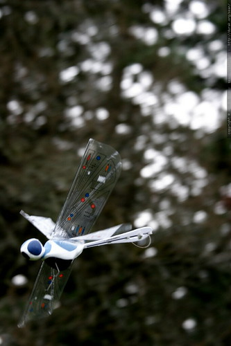 wowwee / flytech dragonfly in midair    MG 8808
