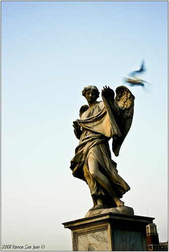 Fly Free (Roma series 3)