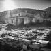 _DSF1034-2017 Paliouri by Miltos Kostoulas (mkostoulas22@gmail.com)
