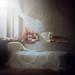 sleeping by anka_zhuravleva