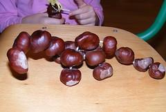 chestnut, nuts & seeds, purple, produce, fruit, food, nut,