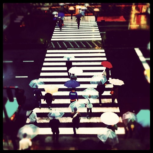 Umbrellas crossing the street
