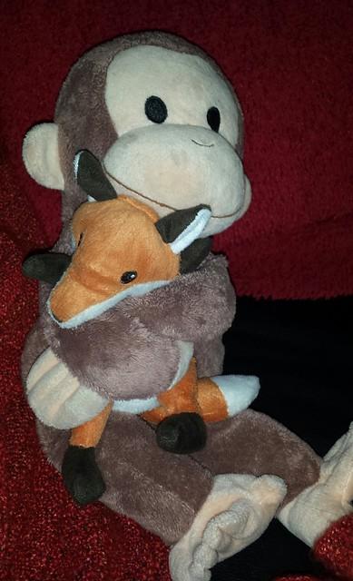 Monkey hugging Bubby Fox