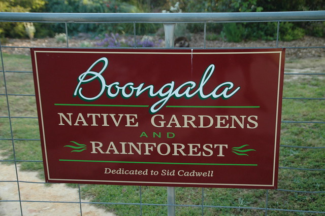 Boongala Native Gardens and Rainforest - Kenthurst