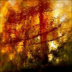 invitation to sit in front of a blazing fire in my wild river…!!! /  invitation à vous assoir devant une bonne flambée de ma rivière sauvage…!!!