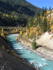 Kicking Horse River in Yoho National Park