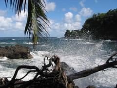 Breaking Wave, Maui