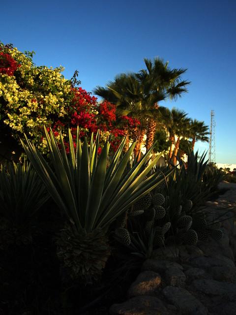 Domina Coral Bay Hotel Resort Sicilia Zagarella